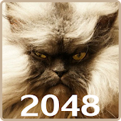 20 48 Cats Puzzle with mPOINTS
