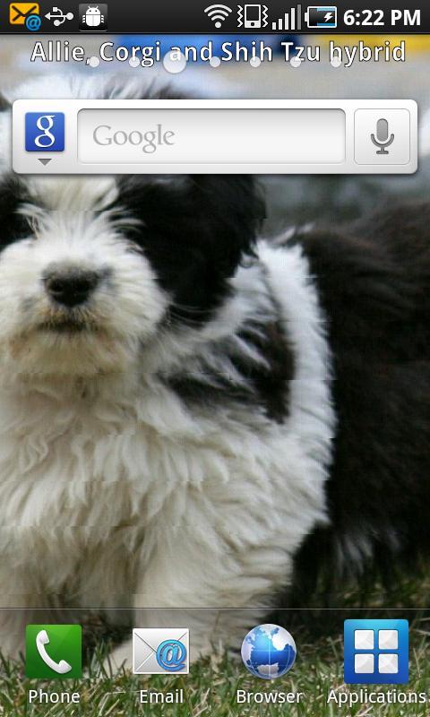 PuppyShare Pro- screenshot