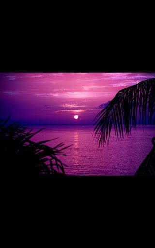 Hd Images Romantic Beach LWP