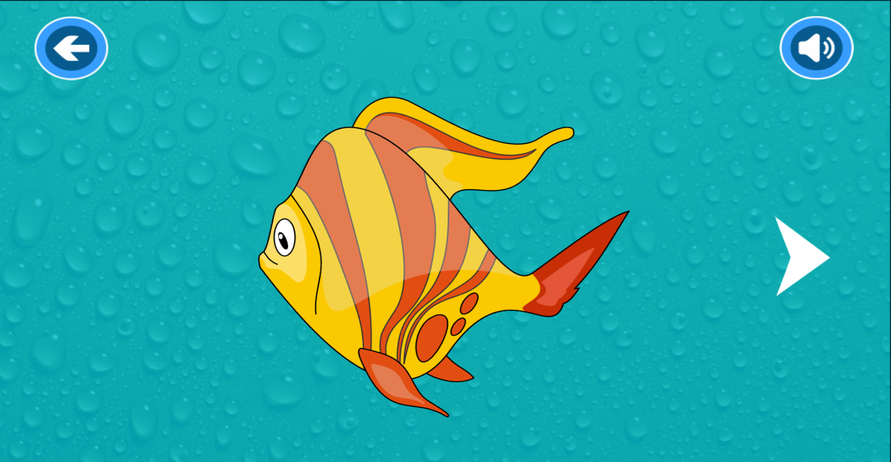 Fish puzzle pr games android apps on google play for Parana the fish