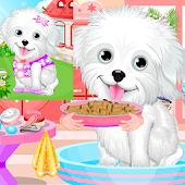 Fluffy Puppy Pet Spa And Care