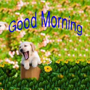 Good Morning Weekly Greetings for PC and MAC
