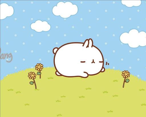 可愛的卡通兔子壁紙
