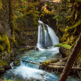 Virgin Creek Falls by Jeannie Meyer - Landscapes Waterscapes ( water, seward highway, virgin creek falls, waterfall, alaska, girdwood, , Earth, Light, Landscapes, Views )