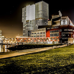 by Patrick Quispel - Buildings & Architecture Office Buildings & Hotels ( rotterdam, buildings, night, architecture, erasmusbrug )