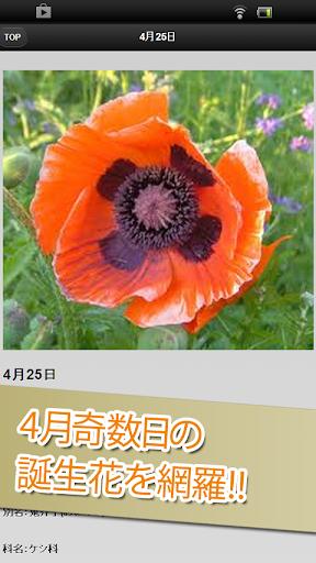 4月奇数日の誕生花|玩娛樂App免費|玩APPs