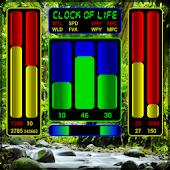 Clock of Life (rainforest) LWP