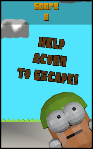 Acorn Escape 3D
