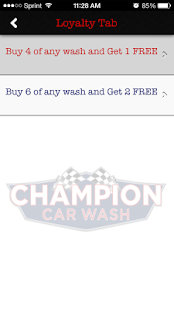 Champion Car Wash- screenshot thumbnail