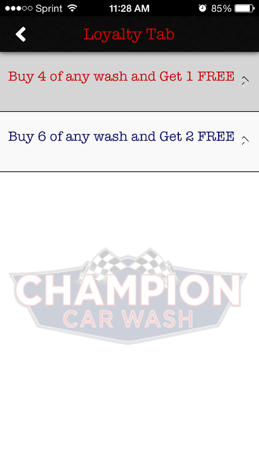 Champion Car Wash- screenshot