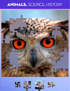 100 PICS Puzzles - FREE Jigsaw Screenshot 11