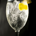 GIN TONIC MUNDO icon