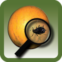 NPDN Citrus Pests icon
