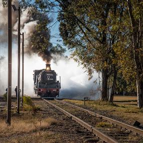 Steamer by Richard Ryan - Transportation Railway Tracks ( railway, engine, train, tracks, steam,  )