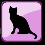 Daily Cat Trivia