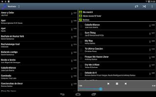 Screenshot of DJD Player
