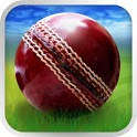 Cricket WorldCup Fever icon