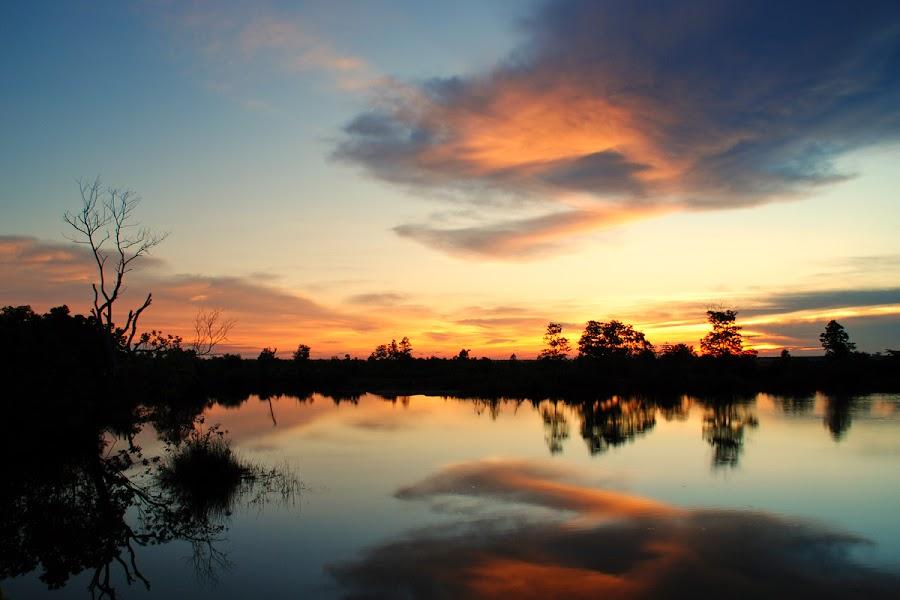 by Joel  Pangoe Rihingan - Landscapes Sunsets & Sunrises (  )