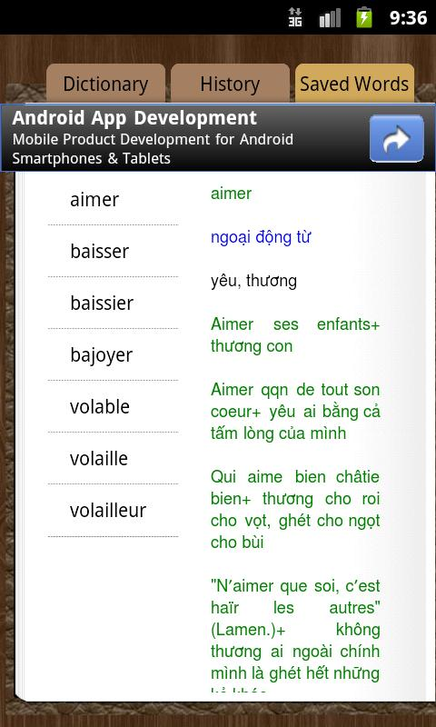 Dictionary French Vietnamese - screenshot