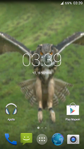 Flying Owl Live Wallpaper