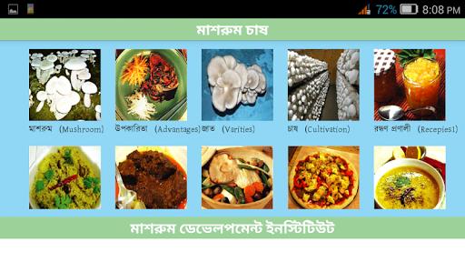 Mushroom Production Bangladesh