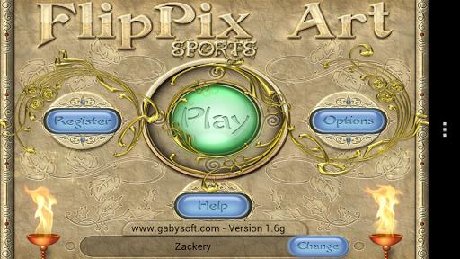FlipPix Art - Sports