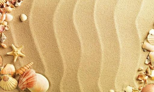 Sea Shell Live Wallpaper