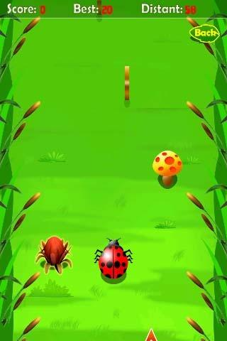 Beetle Race Round HD