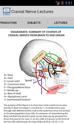 Anatomy Cranial Nerve Lectures