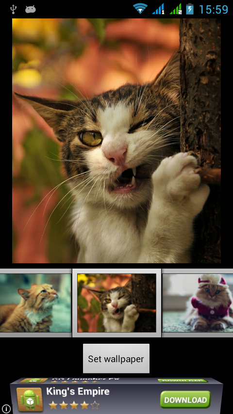 funny cats live wallpaper android apps on google play