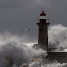 Storm in Oporto by Maria Alexandra Abrunhosa - Landscapes Waterscapes ( lighthouse, sea, oporto, storm, city )