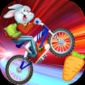 Bunny BMX