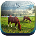 Majestic Horses - Start Theme icon