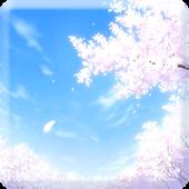 [Anip] 라이브 배경화면 (벚꽃향연)