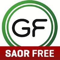 Gaelfon FREE Irish Translator 3.0