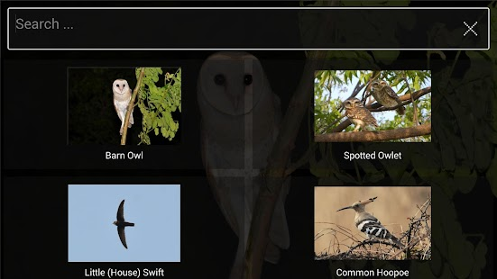 Bird Find- screenshot thumbnail