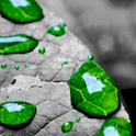 Green Drops Live Wallpaper