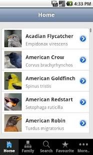 Backyard Birds of America - screenshot thumbnail