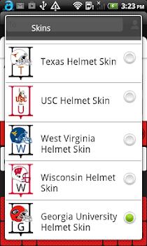 Georgia Helmet Skin