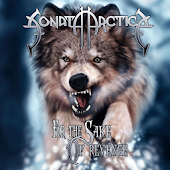 Sonata Arctica All Lyrics