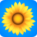 ♥ Sunflowers Live Wallpaper logo
