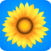 ♥ Sunflowers Live Wallpaper