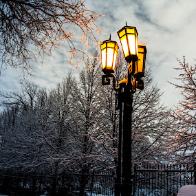 Winter 2014, Montreal by Faisal Abuhaimed - City,  Street & Park  City Parks
