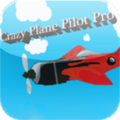 Crazy Plane Pilot