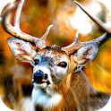 deer winter hunting 2014 icon