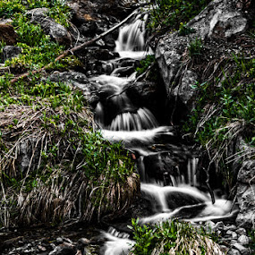 Smooth And Cool by Dwayne Pippin - Landscapes Waterscapes ( waterfalls, lanscape, falls )