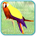 Talking Parrot icon