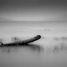 Immersed by Adi Krishna - Landscapes Waterscapes