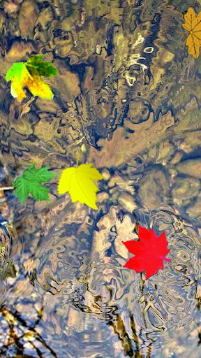 Toddler Game Water Ripple Leaf