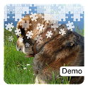 More Dog Jigsaw Puzzles Demo icon